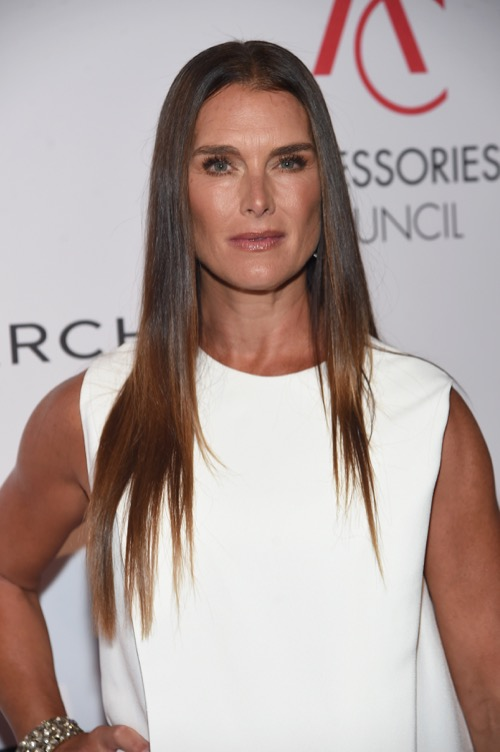 Brooke Shields Joins Law & Order: SVU Season 19 In Mystery Role