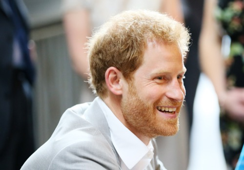 Meghan Markle's Brother Begs Prince Harry To Marry His Little Sister