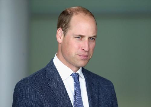 Prince William's Work Responsibilities Attract Massive Controversy