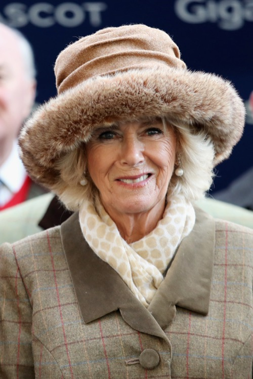 Camilla Parker-Bowles Most Delighted With Prince Harry And Meghan Markle's Engagement: Gains New Royal Ally