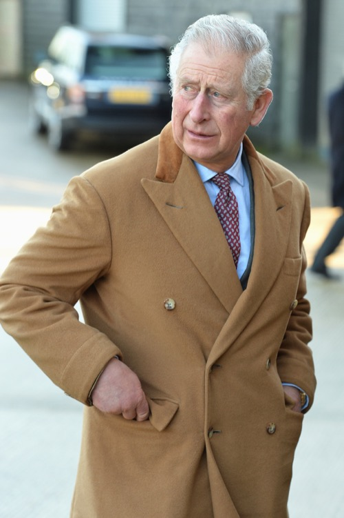 Prince Charles Called Snake-Oil Salesman In New Explosive Tell-All Book