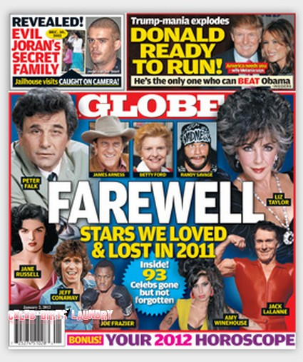 The Stars We Loved & Lost In 2011 (Photo)