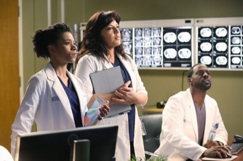 "Grey's Anatomy Recap 3/12/15: Season 11 Episode 15 ""I Feel the Earth Move"""