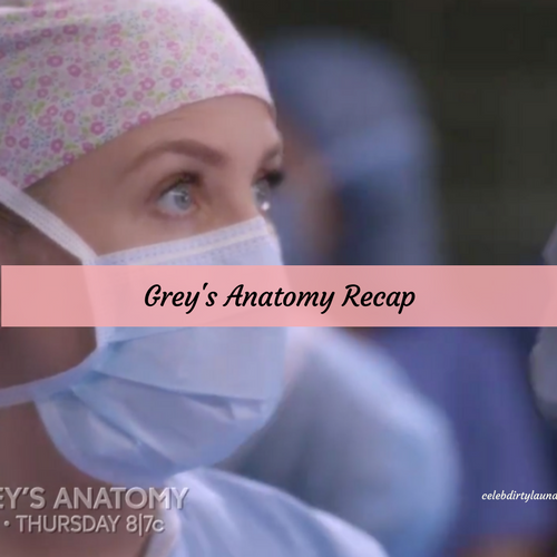 "Grey's Anatomy Recap 4/6/17: Season 13 Episode 19 ""What's Inside"""