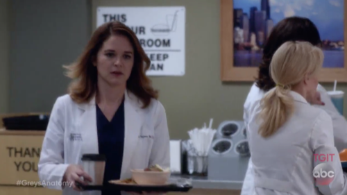 Grey\'s Anatomy Recap 2/16/17: Season 13 Episode 13 \