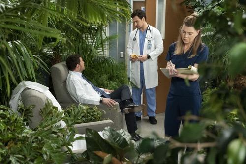 "Grey's Anatomy Recap 03/21/19: Season 15 Episode 18 ""Add It Up"""