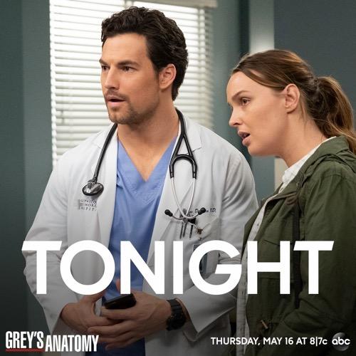 "Grey's Anatomy Finale Recap 05/16/19: Season 15 Episode 25 ""Jump into the Fog"""