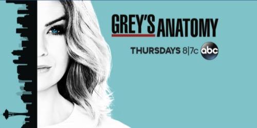 "Grey's Anatomy Recap 10/6/16: Season 13 Episode 3 ""I Ain't No Miracle Worker"""