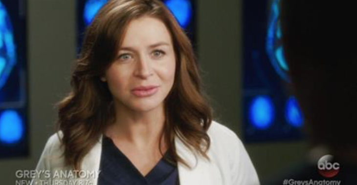 "Grey's Anatomy Recap - Leah Murphy Trouble: Season 13 Episode 6 ""Roar"""