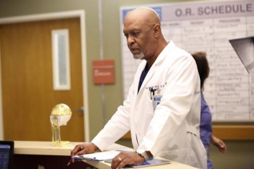 Grey's Anatomy Recap - Walking Tall: Season 12 Episode 2 Recap
