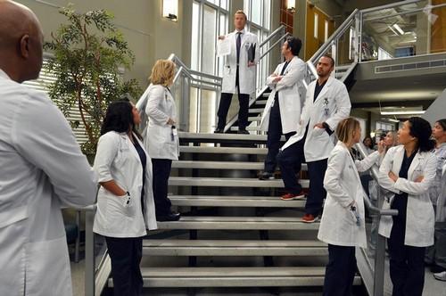 "Grey's Anatomy RECAP 3/6/14: Season 10 Episode 14 ""You've Got To Hide Your Love Away"""