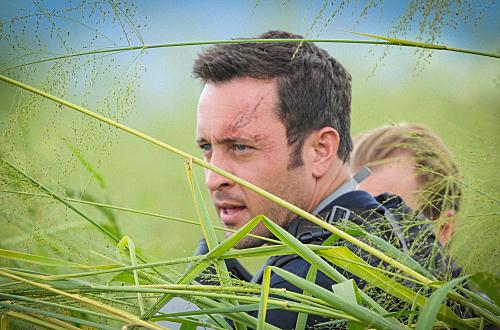 "Hawaii Five-0 Recap - The Bird Flu and the Bees: Season 5 Episode 13 ""La Po'ino"""