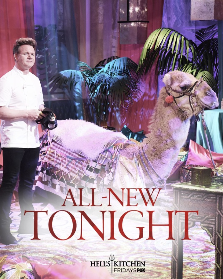 "Hell's Kitchen Recap 12/15/17: Season 17 Episode 10 ""It's All Gravy"""