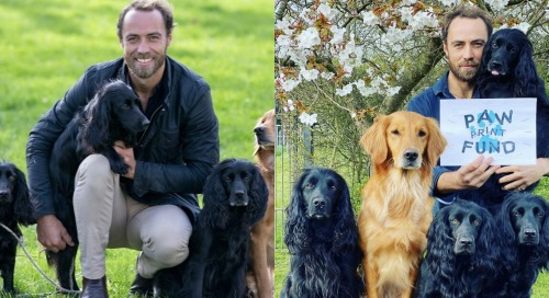 James Middleton Shares Bittersweet News - Kate Middleton's Brother Loses Puppy, Donates Money To Pet Charity