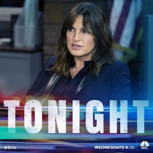 "Law & Order SVU Recap 1/17/18: Season 19 Episode 11 ""Flight Risk"""