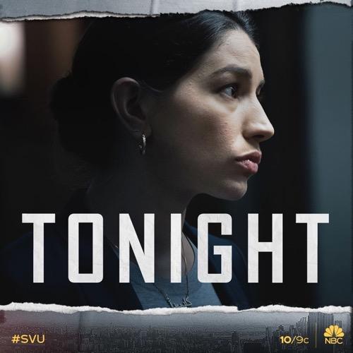 "Law & Order SVU Recap 11/14/19: Season 21 Episode 8 ""We Dream of Machine Elves"""