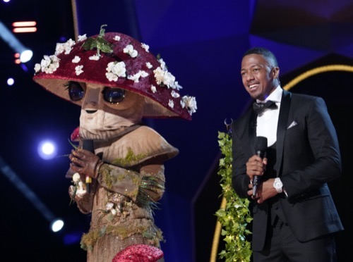 """The Masked Singer Recap 11/26/20: Season 4 Episode 10 """"The Group C Finals - The Mask Gives Thanks"""""""
