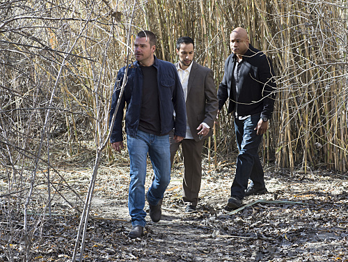 NCIS: Los Angeles Recap - 'Forest for the Trees': Season 6 Episode 15