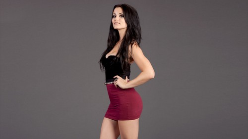 The Five Hottest Divas On The Wwe Roster Today Will Paige Top Aj