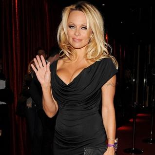 Pamela Anderson Horrified As Crazed Fan Hauled Off Train By Police