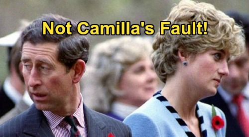 Princess Diana's Psychic Speaks Out - Says Divorce From Prince Charles Not Due To Camilla Parker-Bowles