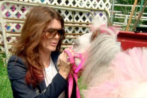 """The Real Housewives of Beverly Hills Recap 12/15/15: Season 6 Episode 3 """"Horsing Around"""""""