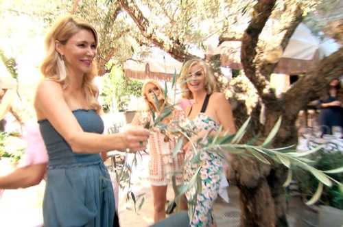 "The Real Housewives of Beverly Hills Recap - Lisa and Brandi Face Off: Season 5 Episode 7 ""Breaking Branches"""