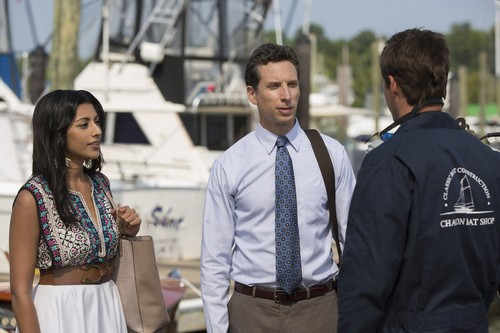 "Royal Pains Recap 8/19/14: Season 6 Episode 11 ""Hankmed On The Half Shell"""