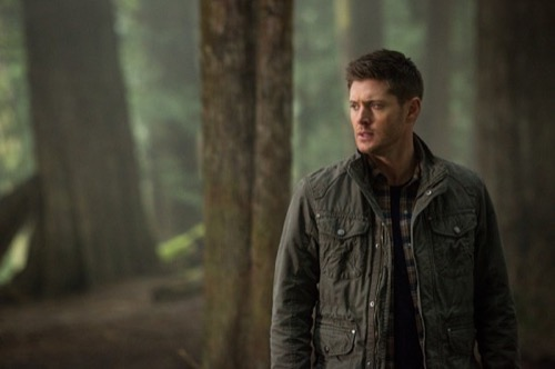 "Supernatural Recap - Sam and Rowena Strike a Bargain: Season 10 Episode 19 ""The Werther Project"""