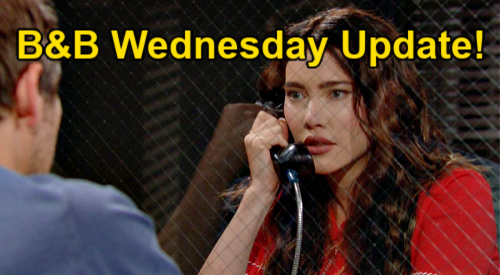 The Bold and the Beautiful Spoilers Update: Wednesday, June 16 – Hope & Steffy Fight for Liam's Future – Moms Need Dad for Kids