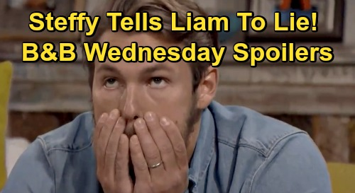 The Bold and the Beautiful Spoilers: Wednesday, December 2 - Hope Struggles With Thomas - Steffy Urges Liam To Lie