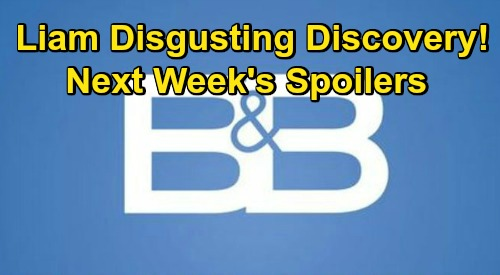 The Bold and the Beautiful Spoilers: Week of November 23 – Liam Discovers Hope Doll Horror - Thanksgiving Preemption Schedule