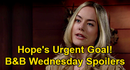 The Bold and the Beautiful Spoilers: Wednesday, June 16 – Steffy Reconnects with Jailed Liam – Hope's Urgent Goal