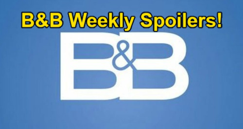 The Bold and the Beautiful Spoilers: Week of August 2 – Mystery Woman Surprise – Stephanie's Portrait Back Up – Finn Marries Steffy