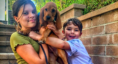 The Young and the Restless Spoilers: Michelle Stafford Adopts New Family Member - Y&R Fans React