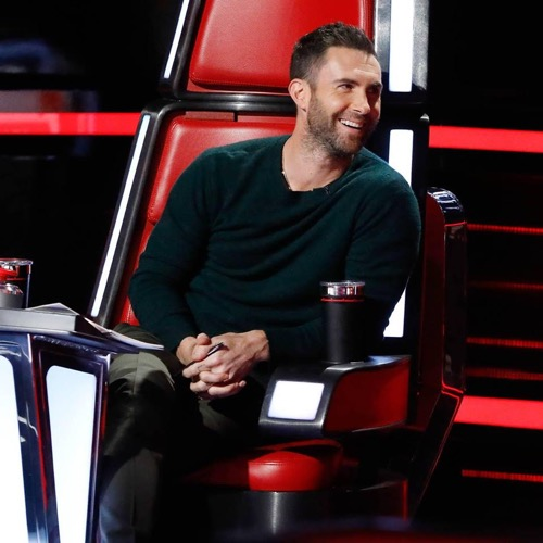 The Voice Season 13 Playoffs Recap and Results November 14 Episode
