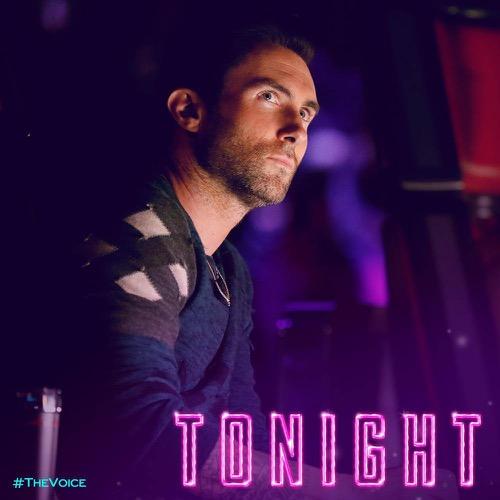 """The Voice Recap 11/28/17: Season 13 Episode 21 """"Live Top 11 Eliminations"""""""