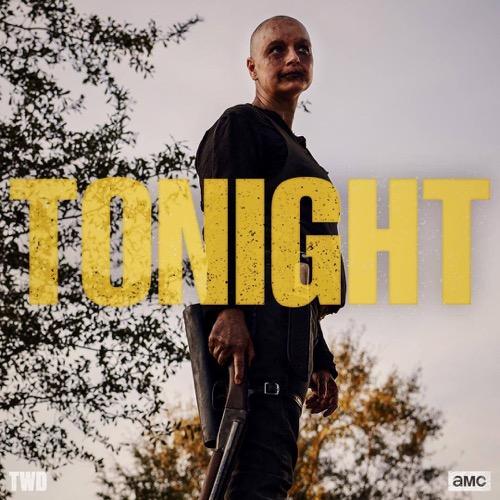 """The Walking Dead Recap 03/24/19: Season 9 Episode 15 """"The Calm Before"""""""