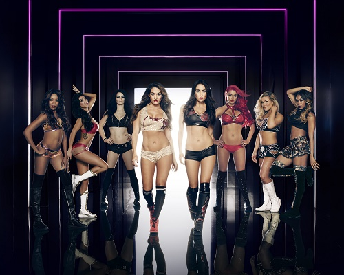 The Bella Twins Of 'Total Divas' Dish On Their Dynamite WWE Lifestyle! CDL Exclusive Interview