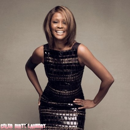 Whitney Houston's Death Was No Accident Says Sister-In-Law