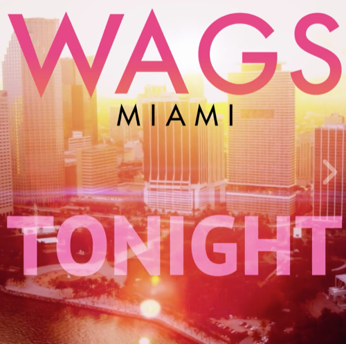 "WAGS Miami Premiere Recap 8/20/17: Season 2 Episode 1 ""Bride Wars"""