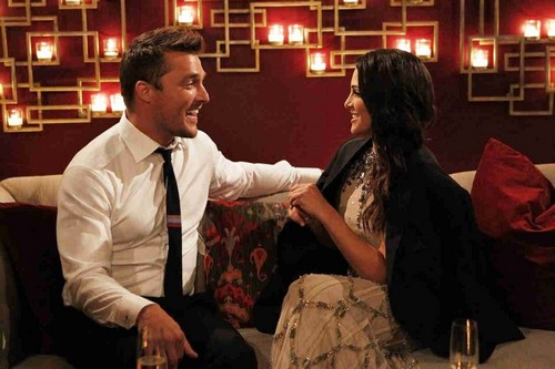 Andi Dorfman Wants The Bachelor 2015 Chris Soules Back After Josh Murray Break Up: Jealous and Lonely?