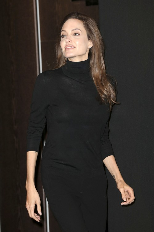Angelina Jolie, Brad Pitt Cheating Rumors: Flirting With Miyavi and Melanie Laurent Flirting, Marriage Falling Apart?