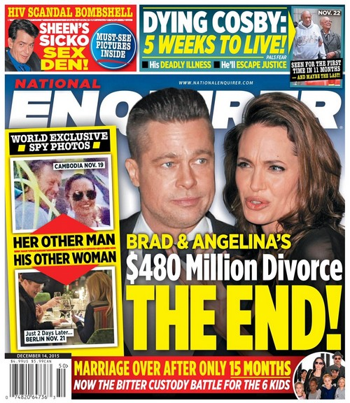 Brad Pitt and Angelina Jolie Head For Divorce: Brangelina Fighting Over $480 Million and 6 Kids?
