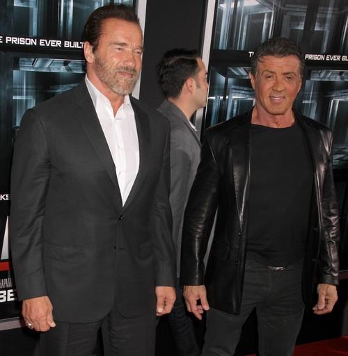 Arnold Schwarzenegger To Run For President - Will He Get Mildred Baena's Son's Vote?