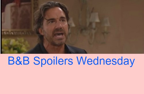 The Bold and the Beautiful (B&B) Spoilers: Father and Son Wild Punch Up Over Hookup - Quinn Calls Liam 'Spineless Lapdog'