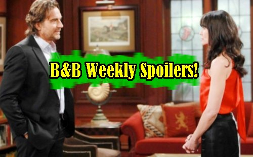 'The Bold and The Beautiful' Spoilers: Week of November 7 – Ridge Kisses Brooke - Quinn Brawls at FC Show – Zende Beds Sasha
