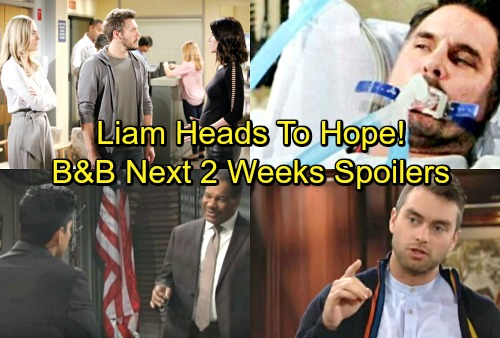 The Bold and the Beautiful Spoilers for Next 2 Weeks: Liam Pulled in Hope's Direction – Ridge's Arrest Brings Confusion