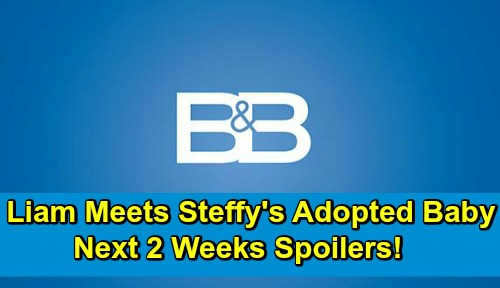 The Bold and the Beautiful Spoilers Next 2 Weeks: Liam Meets Steffy's Adopted Daughter Phoebe, But It's Really Baby Beth