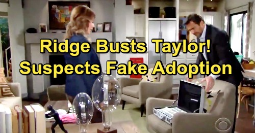 The Bold and the Beautiful Spoilers: Ridge Suspicious Of Steffy's Speedy Adoption - Catches Taylor With Loads Of Cash